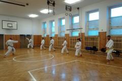 Trénink-s-D.-Havlíkem-11