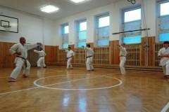 Trénink-s-D.-Havlíkem-12